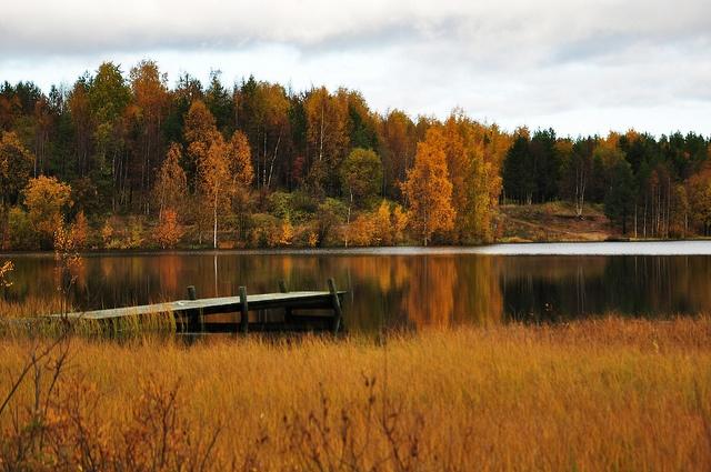 Bergnäset, Autumn, via Flickr.