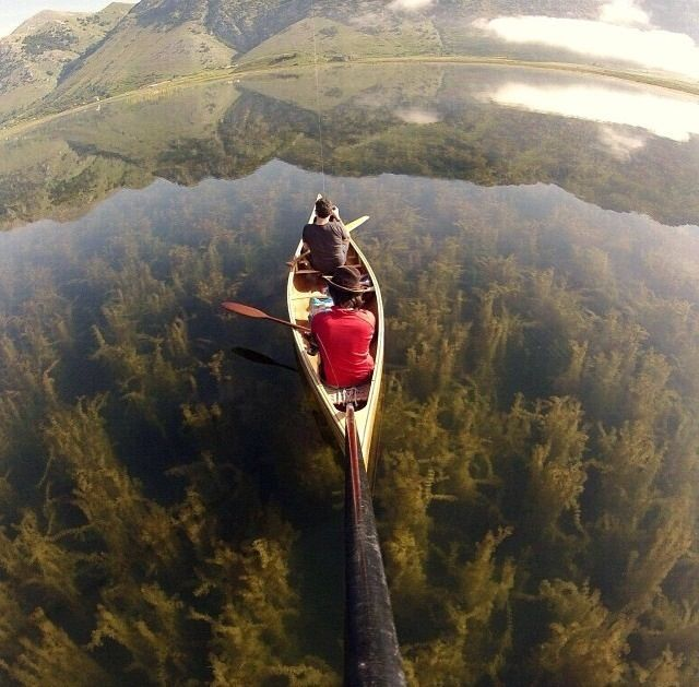 Lago Matese Caserta in Italy. AKA. The Dead Marshes.  Weeeeird.... I have dreamed about this place.