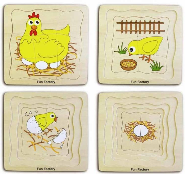 Learn what comes first - the chicken or the egg! This four-in-one wooden layered puzzle from Fun Factory shows the four stages of the life cycle of the chicken. Great for little ones into science and nature, and for those who enjoy the challenge of a puzzle.