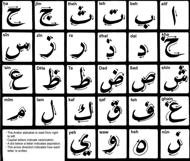 Arabic Alphabet - Arabic Calligraphy                                                                                                                                                     More