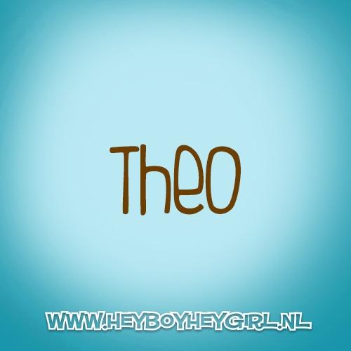 Theo (Voor meer inspiratie, en unieke geboortekaartjes kijk op www.heyboyheygirl.nl)