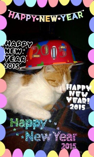 Mi #gato pelusa con mi gorro #añonuevo #cat #felizañonuevo #instacat #newyear #linecamera