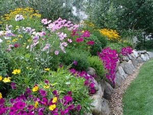 Best Suburban Yard Images On Pinterest Landscaping Ideas