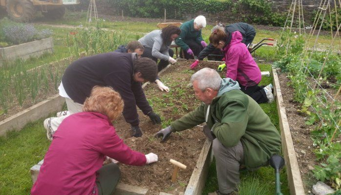 Community Gardens - Places Where More Than The Plants Grow