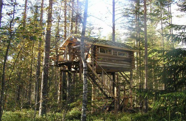 Glamping Treehouse Sweden