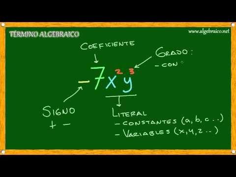 Algebraico.net - Elementos de un Término Algebraico - YouTube