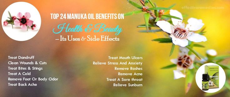 Top 24 Manuka Oil Benefits On Health