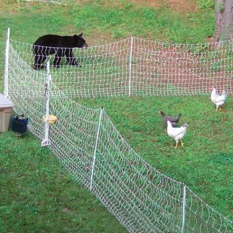 PoultryNet® 12/48/3 Electric Netting | Farming | Electric