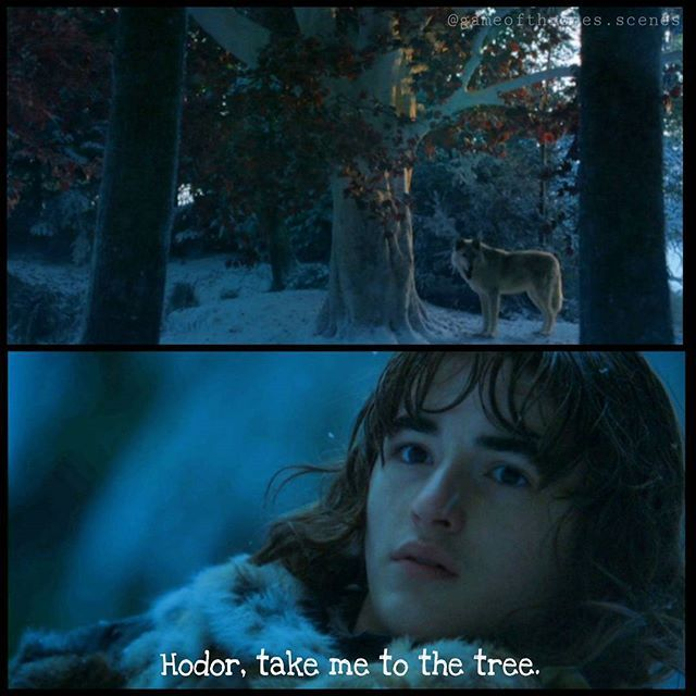 Meanwhile beyond the Wall, Summer leaded him to a tree, a tree that looks similar to the Hearttree in Winterfell. They stopped. Bran wanted to take a closer look and asked Hodor to take him to the tree. --- Please check out the account of  @thejaimelannister 😊 @thejaimelannister 😊 @thejaimelannister 😊  and leave a follow ☝ ☝ ☝ --- #brandonstark #branstark #isaachempsteadwright #summer #direwolf #tree #gameofthrones