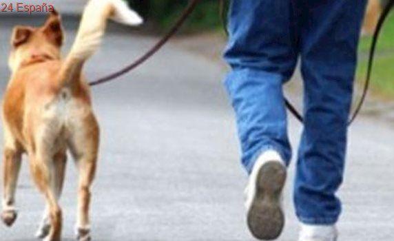 Mata a su hijo en una discusión por ver quién saca a pasear al perro