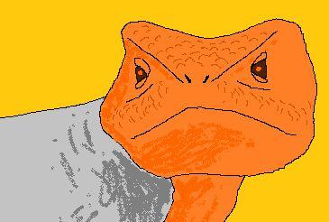 The mysteries!.... The WONDER! http://dangermusichelps.blogspot.co.uk/2014/08/nerd-fact-of-time-period-lizards.html
