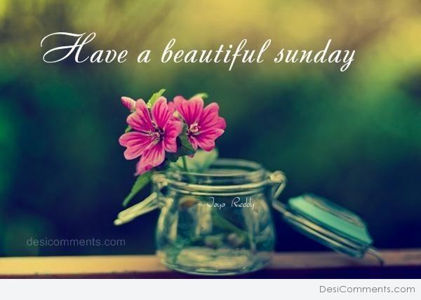 76 Best Happy Sunday Images On Pinterest