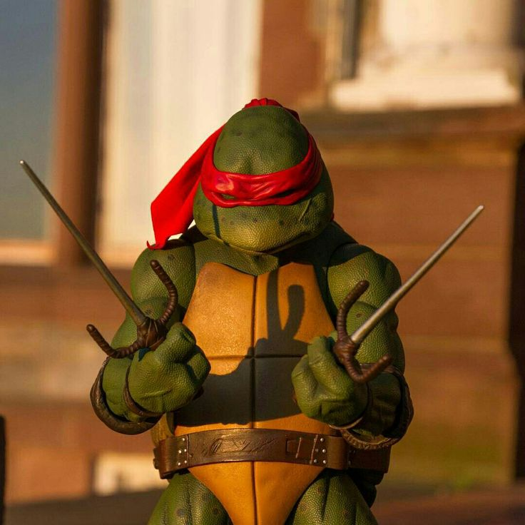 Raph  Credits to the tone.toys on instagram