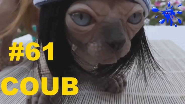 Лучшие приколы Best Coub Выпуск 61