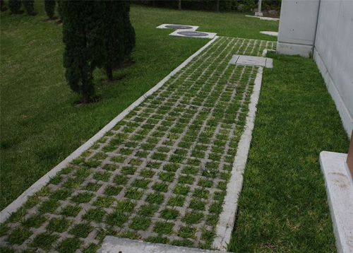 Adoquin ecol gico adopasto cochera proyectos que for Como colocar adoquines en el jardin