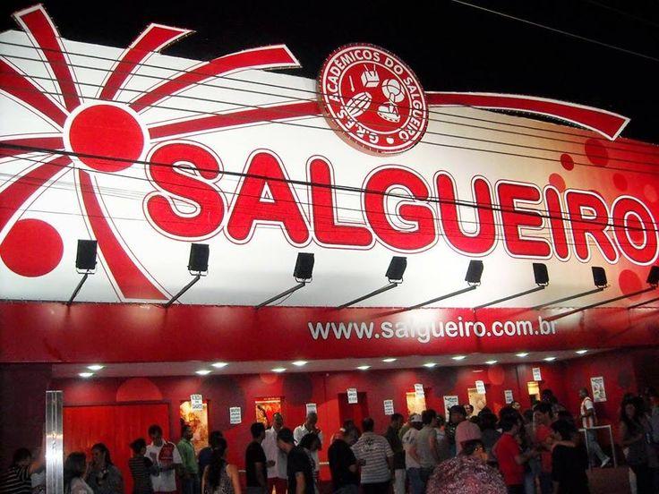 COMUNIDADE RIO DE JANEIRO: CARNAVAL 2015 ACADÊMICOS DO SALGUEIRO