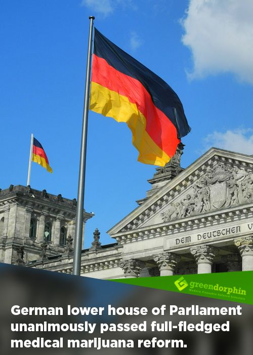 Learn More About the Cannabis Reform in Germany
