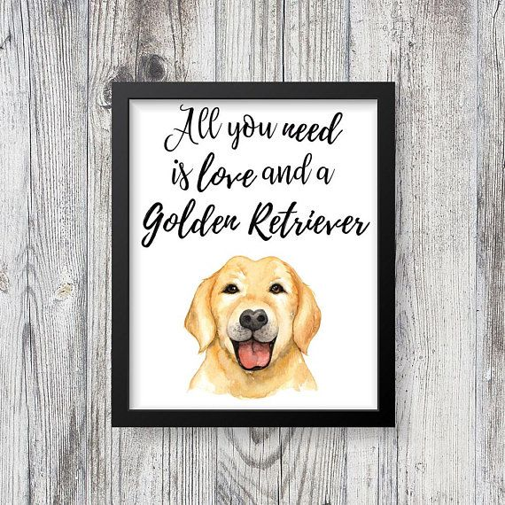 Download All You Need is Love and a Golden Retriever Sign ...