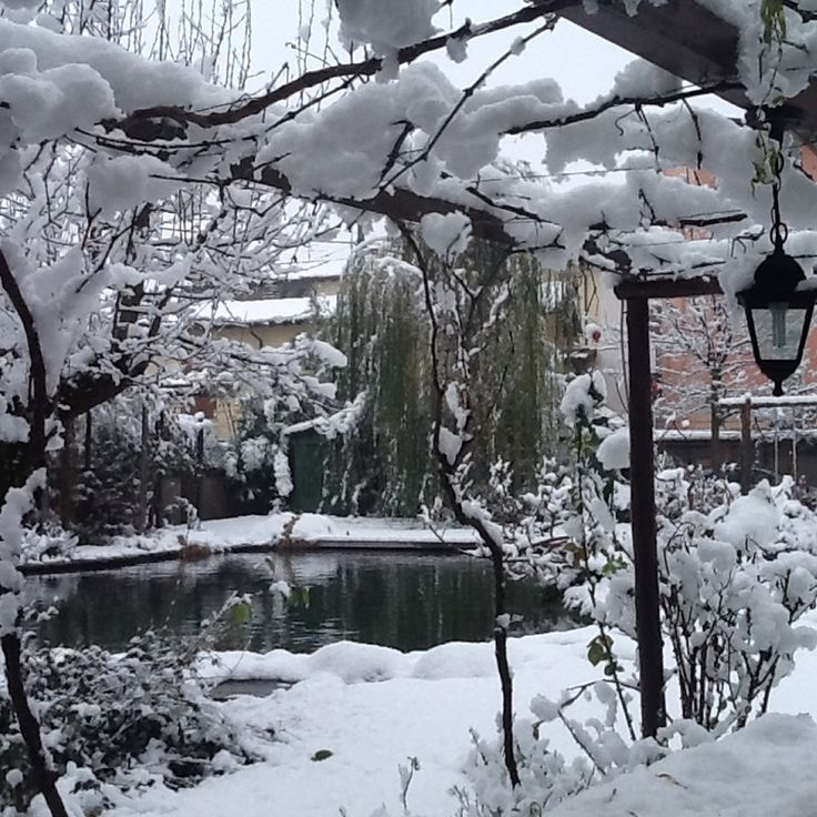 10 consigli per la cura del giardino in inverno