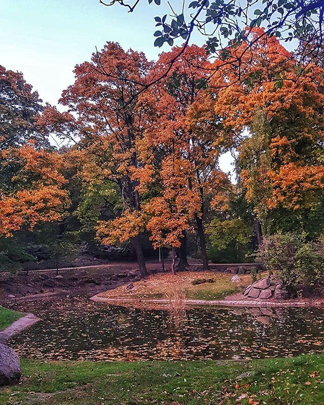 Jesien Ach To Ty Wkraczamy W Swiat Pozytywnych Wibracji Zlote