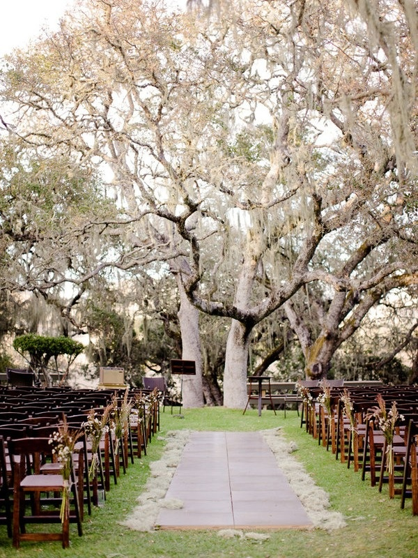 ceremony setting, in love with the trees