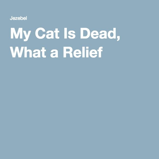 My Cat Is Dead, What a Relief