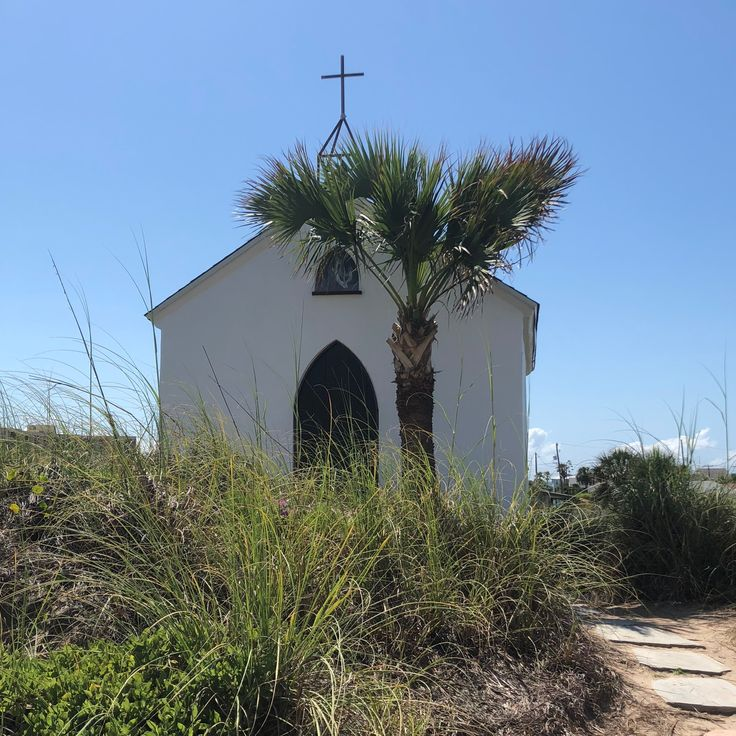 Mustang Island Beach: Where To Find The 8 Wonders Of Port Aransas