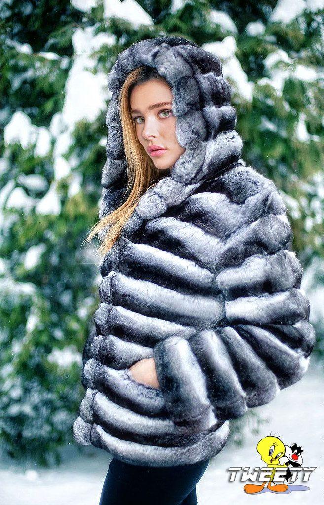 """tweetycelibritiesinfur: """" Chloë Grace Moretz in chinchilla fur coat (request by FurHugo) """""""