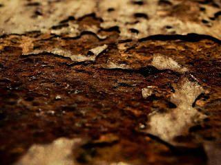 Wie schütze ich meine Vespa vor Rost? #Rostschutz #korrosionsschutz #rust prevention