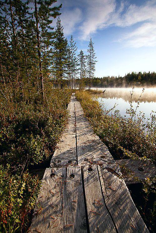 Lapland, #Finland--pitkospuitapitkin