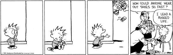 Calvin and Hobbes 11/27/15