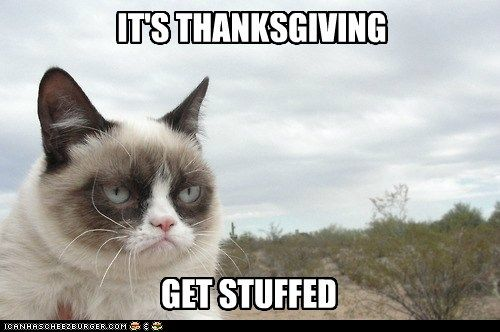A Turkey Day message from Grumpy Cat