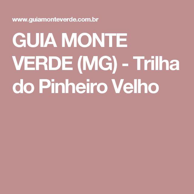 GUIA MONTE VERDE (MG) - Trilha do Pinheiro Velho