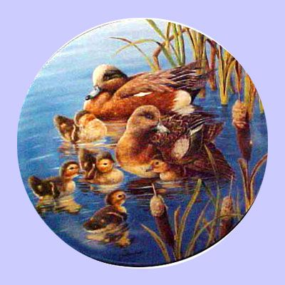 Nature's Nursery - Ducks: Hide and Seek - Knowles - Artist: Joe Thornbrugh