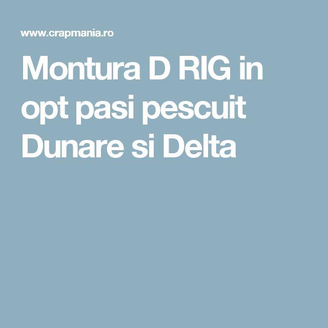 Montura D RIG in opt pasi pescuit Dunare si Delta