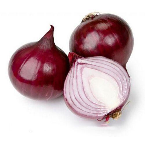 200pcs Giant Onion Seeds Russian Heirloom Garden Supplies For Fun Interest DIY great popular healthy vegetables friut plants
