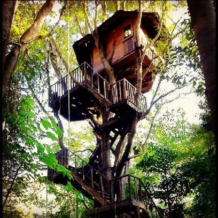 Rabeang Pasak Tree House Resort, B&B in Chaing Mai, northern Thailand