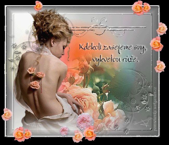 Přání s citáty - Obrázková přání
