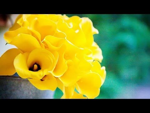 Abraham Hicks - Letting the good stuff shower down around you - YouTube
