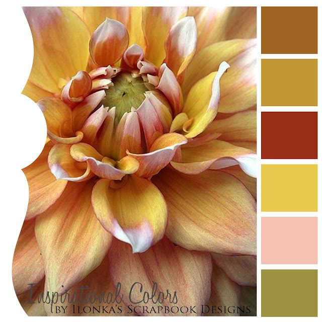 Color Inspiration In 2019: Inspirational Colors By Ilonka's Scrapbook Designs: Color
