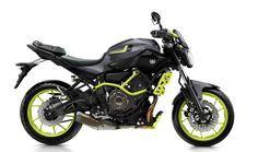 Yamaha MT-07 Moto Cage 'Night Fluo'
