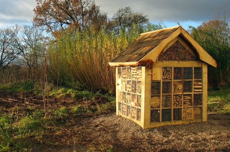 Big insect house Natalie Taylor - 2007