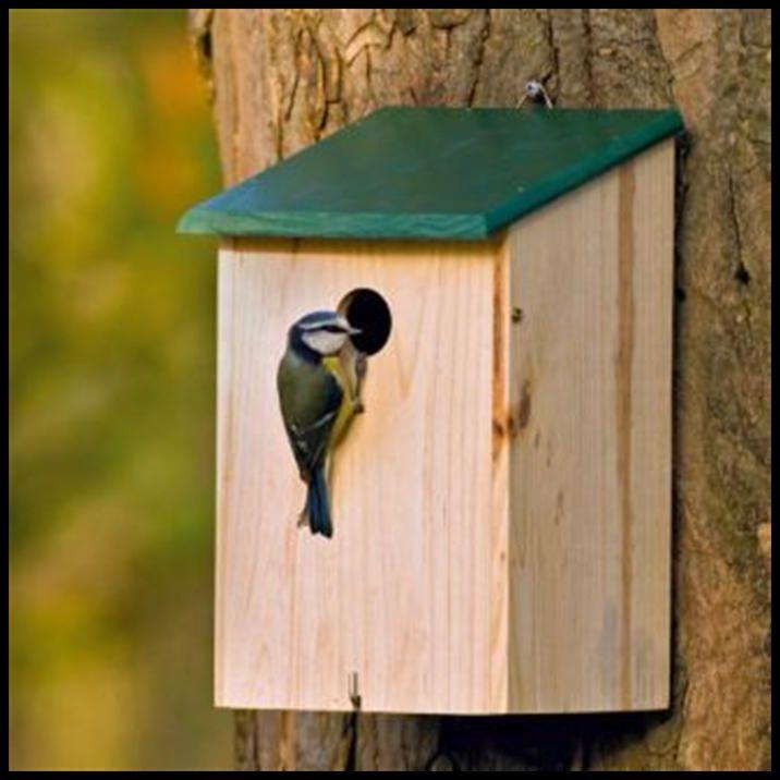 fancy wooden bird houses | TRADITIONAL WOODEN BIRD NESTING NEST BOX BIRD HOUSE Enlarged Preview