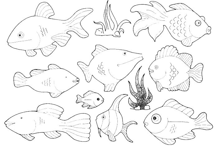 Small Ocean Fish Coloring Pages