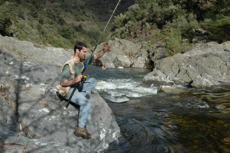 comment pecher la truite en ruisseau