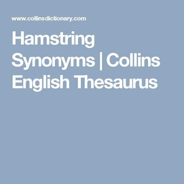 Hamstring Synonyms | Collins English Thesaurus