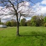 Camping spots - Budle Bay Campsite