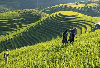 Sapa Tours with Asia Charm Tours: Best of Northern Vietnam Tours – 7Days