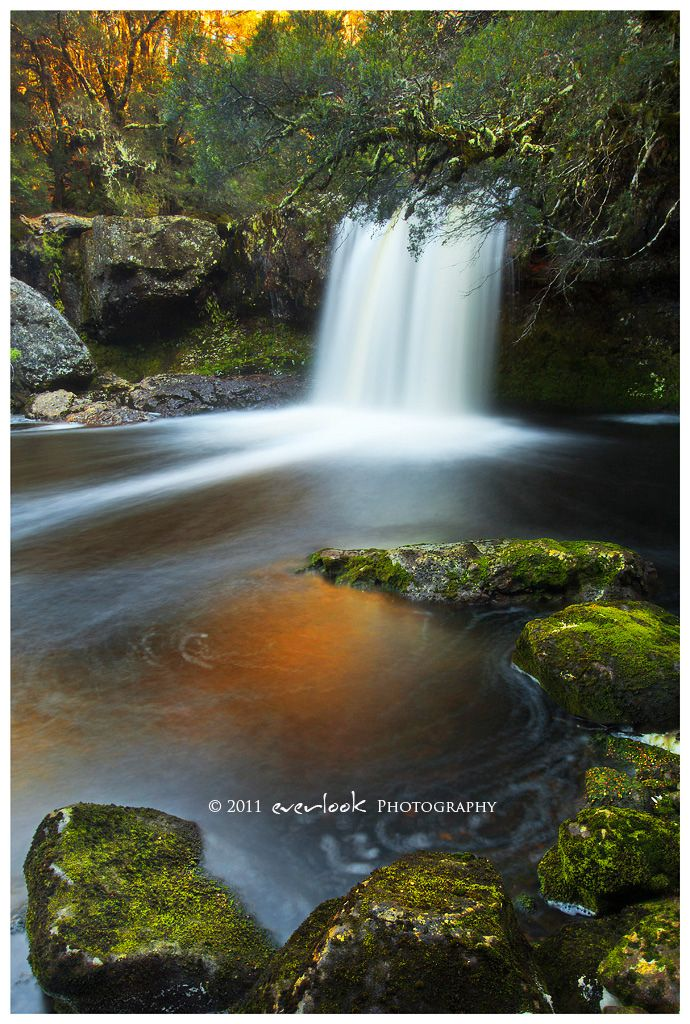 Knyvet Falls located at Cradle Mountain or Lake St Clair National Park in…