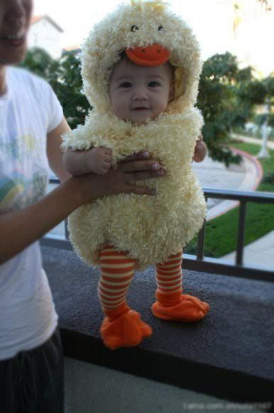 Baby duck. Too cute! First Halloween